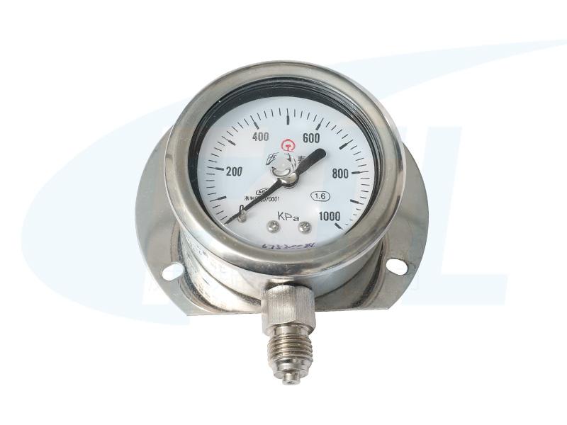 YN60T耐震压力表