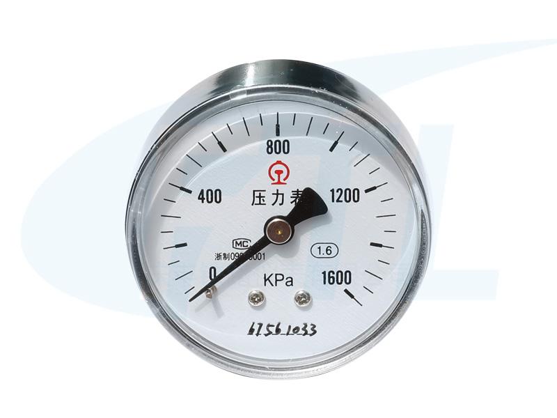 Y60-AZ压力表