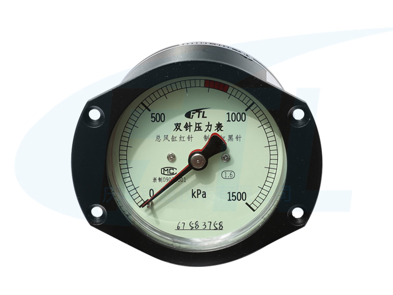 YZS-80A双针压力表