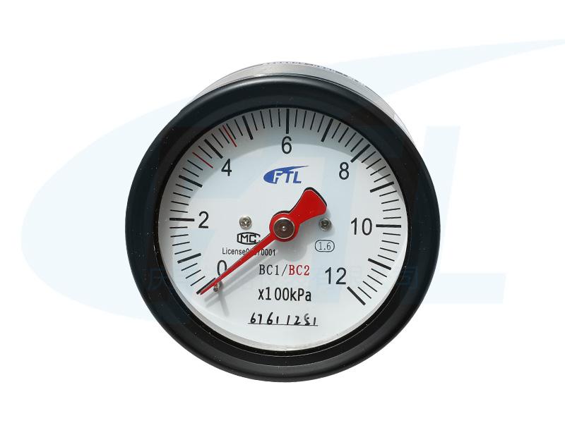 YTS-80Z双针压力表(出口)
