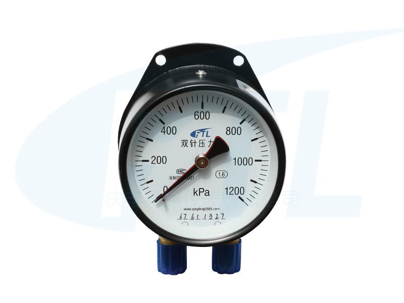 YCS100双针压力表