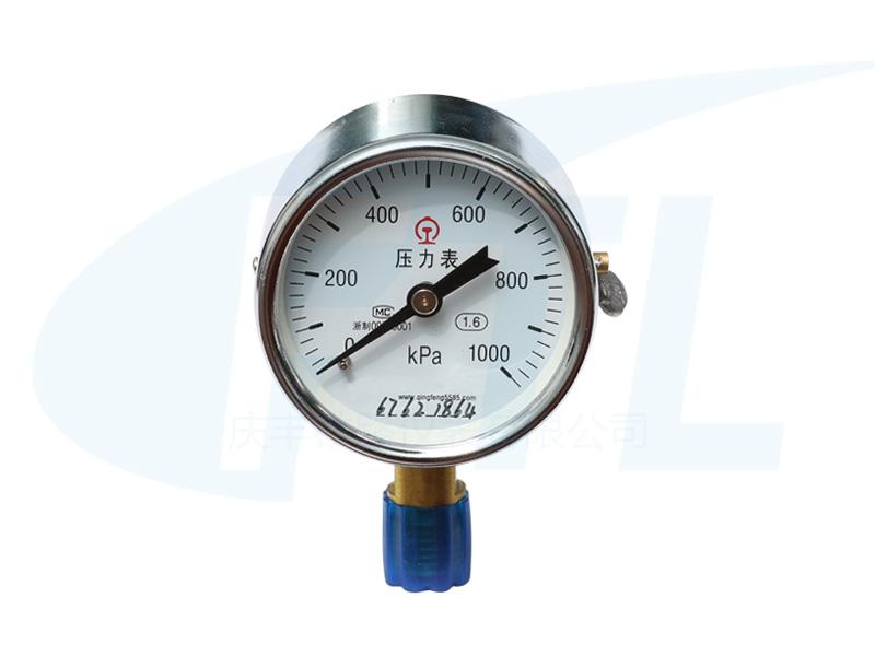 Y60单针压力表