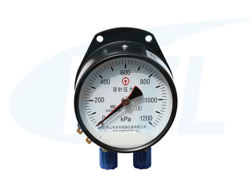 YCS100-II双针压力表