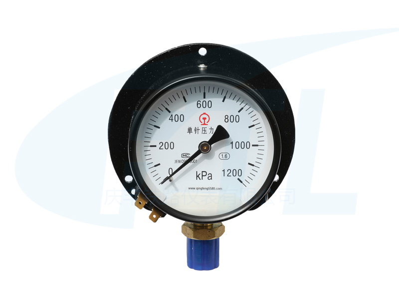 Y 100T-II单针压力表