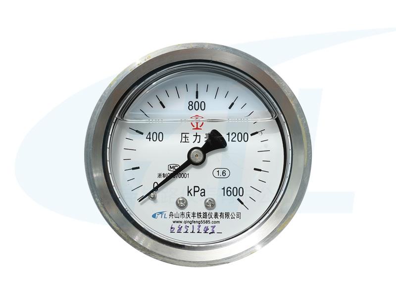 YN60Z耐震压力表
