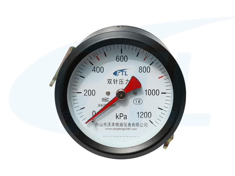 YZS-102Z双针压力表