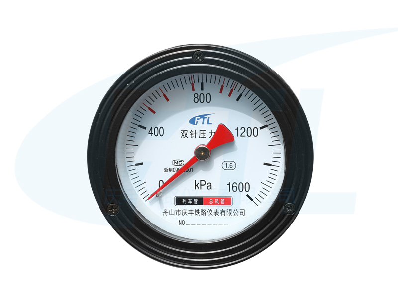 YS-100Z双针压力表-1600KPa