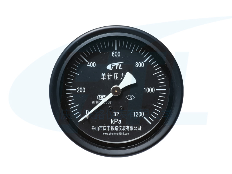 YCS100-IV单针压力表BP