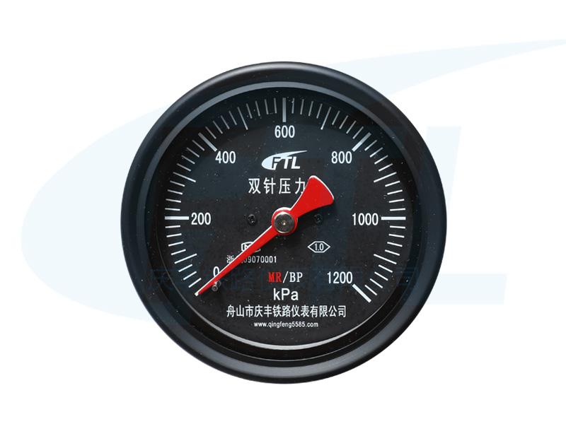 YCS100-IV双针压力表MR/BP
