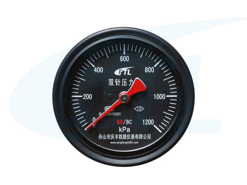 YCS100-IV双针压力表MR/BC