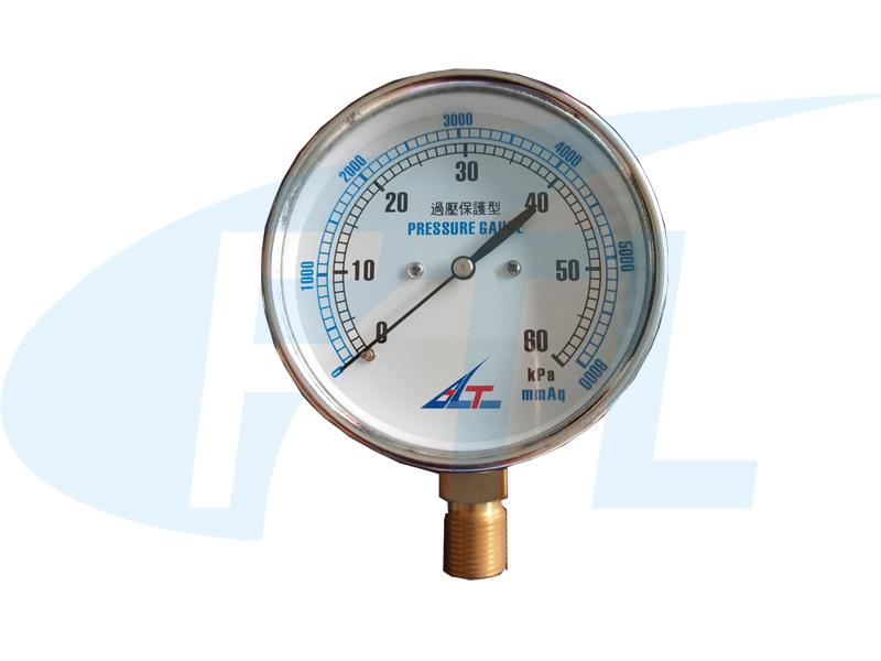 YE75膜盒压力表